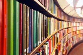 Український інститут книги: бур'яни, лопата і директорка