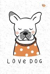 """Dog"" senbernar А5 - фото обкладинки книги"