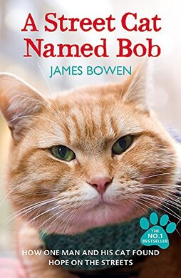 A Street Cat Named Bob: How one man and his cat found hope on the streets - фото книги
