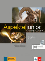 Підручник Aspekte Junior B1 plus bungsbuch