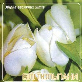 """Аудіодиск """"Білі тюльпани"""" збірка весняних хітів - фото книги"""