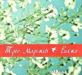 """Аудіодиск """"Весна"""" Тріо Маренич - фото обкладинки книги"""