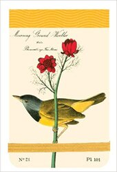Audubon Warblers Mini Journal - фото обкладинки книги