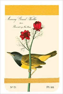 Audubon Warblers Mini Journal - фото книги