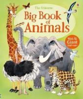 Big Book Of Big Animals - фото обкладинки книги