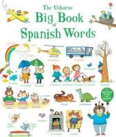 Big Book of Spanish Words - фото обкладинки книги
