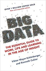 Big Data : The Essential Guide to Work, Life and Learning in the Age of Insight - фото обкладинки книги