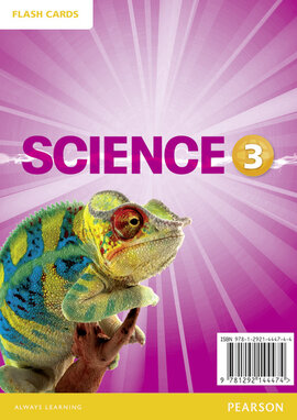Big Science Level 3 Picture Cards (картки) - фото книги