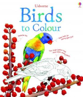 Книга Birds to Colour