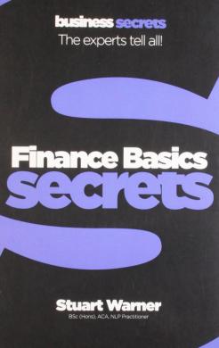Business Secrets: Finance Basics Secrets - фото книги