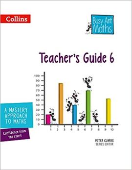 Busy Ant Maths European edition – Year 6 Teacher Guide Euro pack - фото книги