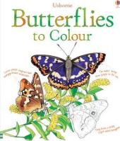 Butterflies to Colour - фото обкладинки книги