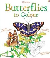 Книга Butterflies to Colour