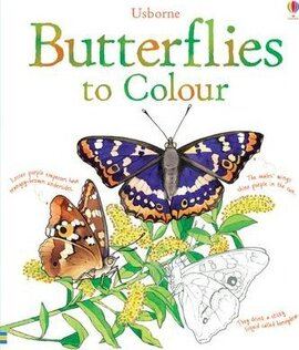 Butterflies to Colour - фото книги