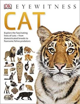 Книга Cat