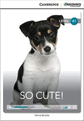 CDIR Level A1. So Cute! (Book with Online Access) - фото книги