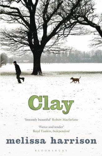 Книга Clay