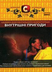 """DVD """"Внутрiшнi пригоди"""" Домашня колекція СТБ - фото обкладинки книги"""