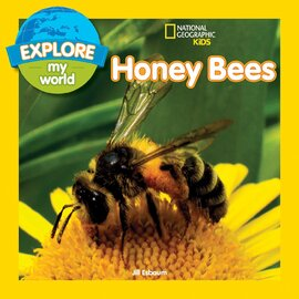 Explore My World: Honey Bees - фото книги