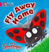 Fly Away Home. Workbook - фото обкладинки книги