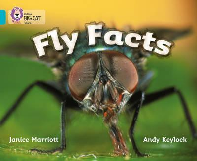 Книга Fly Facts