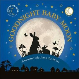 Goodnight Baby Moon. A Bedtime Tale About the Moon - фото книги
