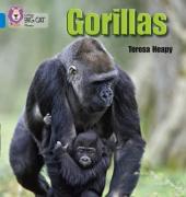 Gorillas - фото обкладинки книги
