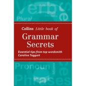 Grammar Secrets - фото обкладинки книги
