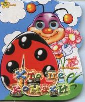 Хто це комахи - фото обкладинки книги