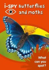 i-SPY Butterflies and Moths: What Can You Spot? - фото обкладинки книги