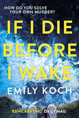 If I Die Before I Wake - фото книги