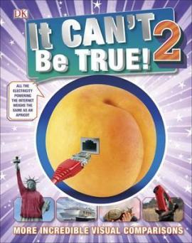 It Can't Be True 2! - фото книги