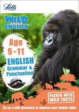 Letts Wild About English. Grammar and Punctuation. Age 9-11 - фото книги
