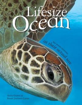 Книга Lifesize Ocean