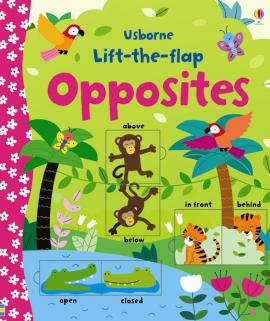 Lift-the-flap Opposites - фото книги