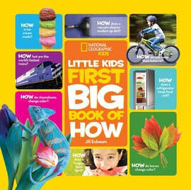 Little Kids First Big Book of How - фото книги