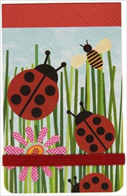 Mini Journal: Ladybugs - фото книги