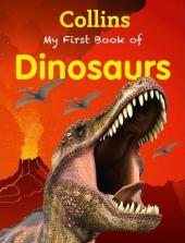 My First Book of Dinosaurs - фото обкладинки книги