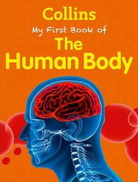Книга My First Book of the Human Body