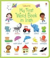 My First Word Book in Irish - фото обкладинки книги