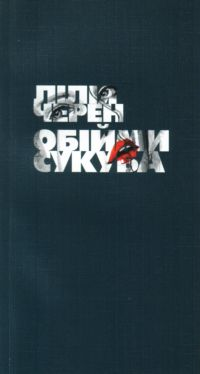 Обійми сукуба - фото книги