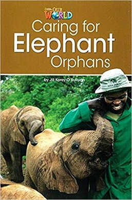 Our World Readers 3: Caring for Elephant Orphans - фото книги
