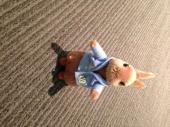 Peter Rabbit. Small Soft Toy - фото обкладинки книги