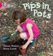 Книга Pips in Pots