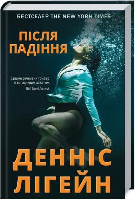 Після падіння - фото книги