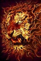 "Книга Плакат ""Fire lion (HR16123)"""