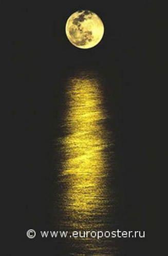 """Плакат """"Moonlit Ocean (PP30592)"""""""
