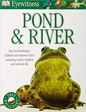 Pond & River - фото обкладинки книги