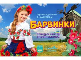 Прикрась життя українською. Барвинки - фото книги