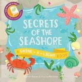 Secrets of the Seashore : A Shine-a-Light Book - фото обкладинки книги